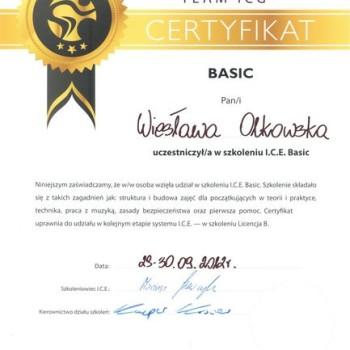 Certyfikat team icg basic